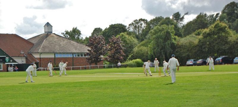 Cricket on Dawson Memorial Field - Runner up Postcard Competition 2014